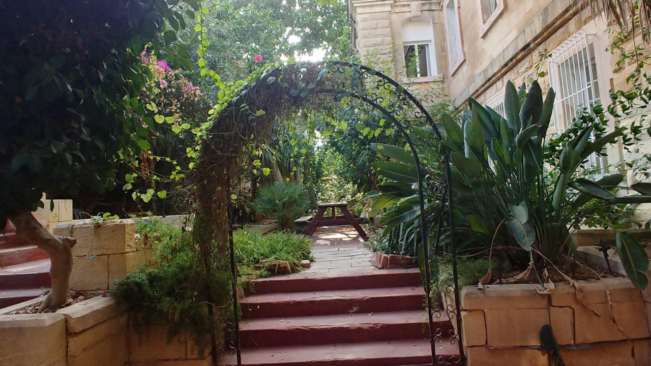 学校内の中庭