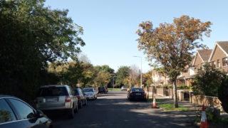 住宅街の中の道路