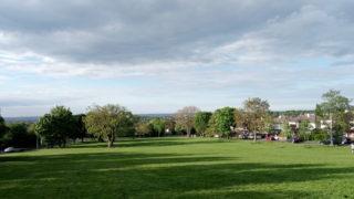 緑の芝生と住宅街
