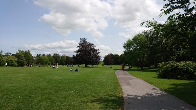 公園の中の小道